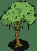 brazilwoodtree_menu